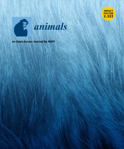 Iron Animal su Animals